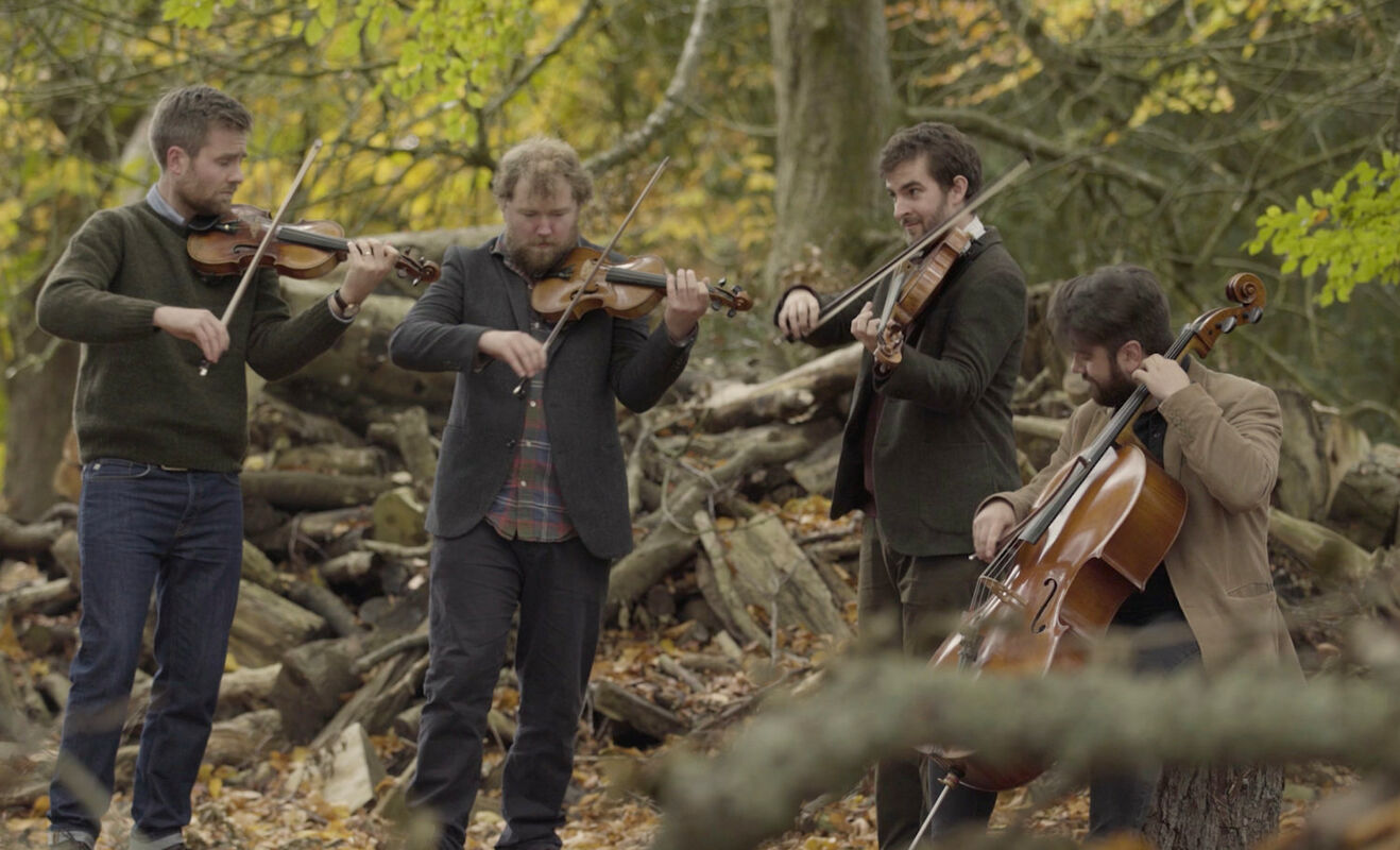 Maxwell Quartet (foto Louise Mather)